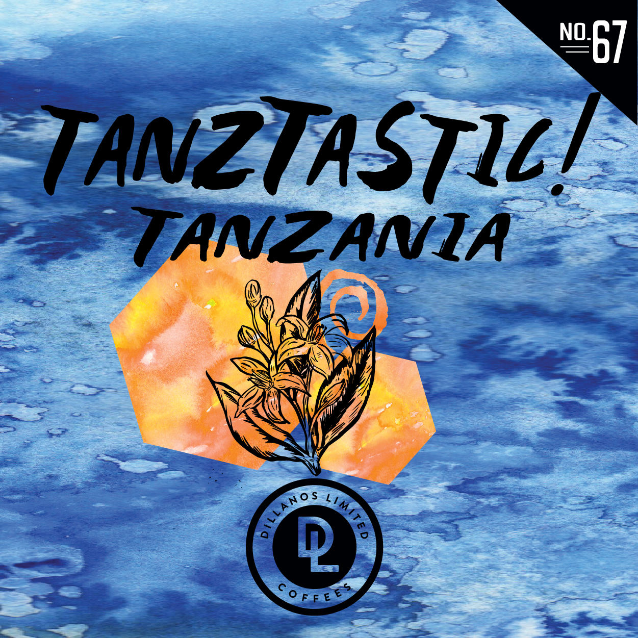 DL No. 67 TanzTastic by Dillanos Coffee Roasters