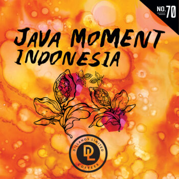 Dillanos Limited No. 70: Java Moment